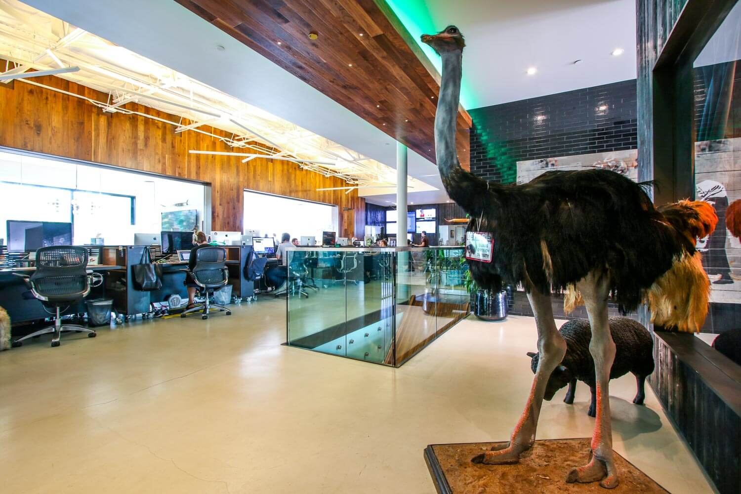 theChive Office-5