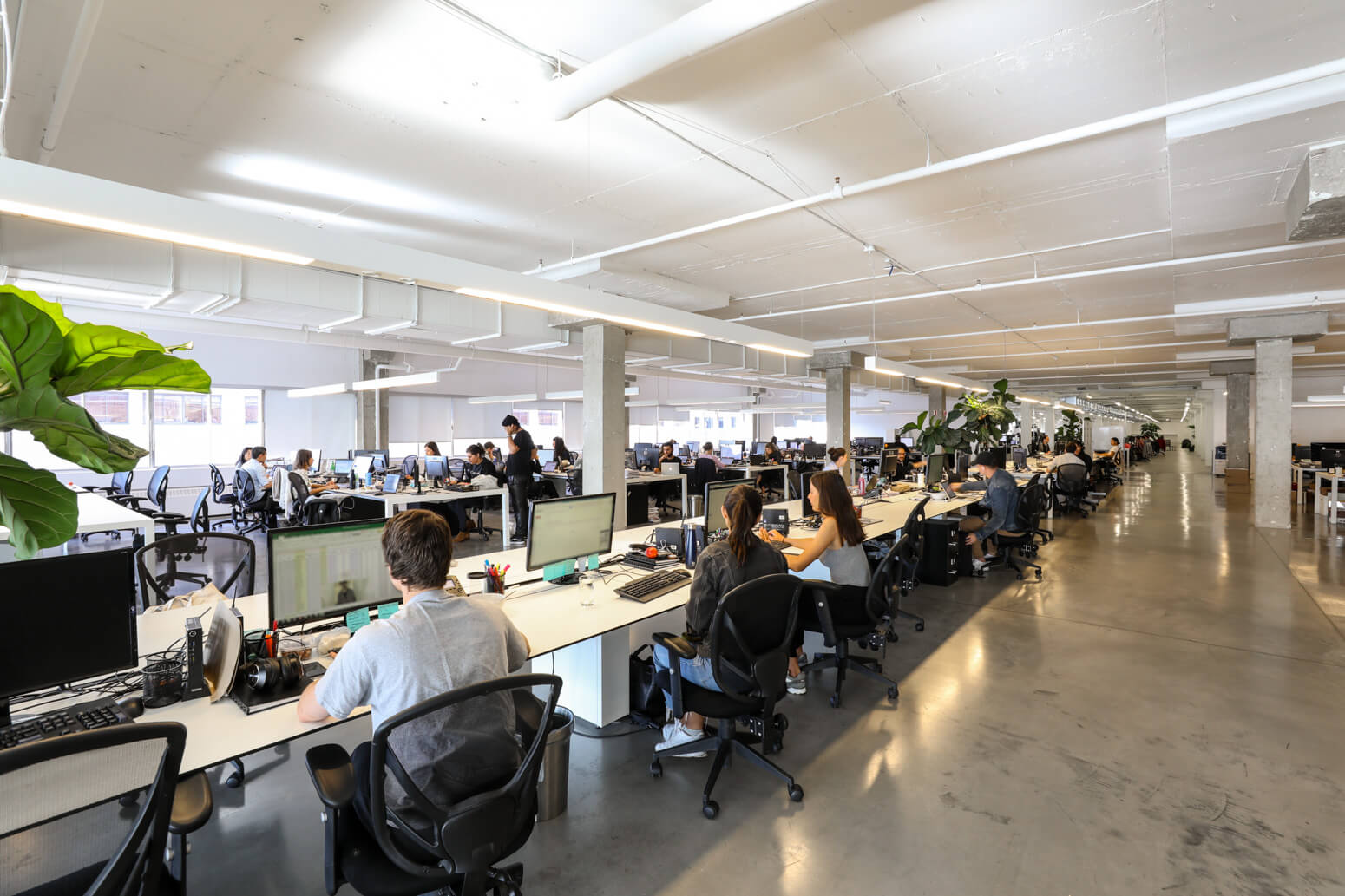 SSENSE Office Killer Spaces Montreal-13