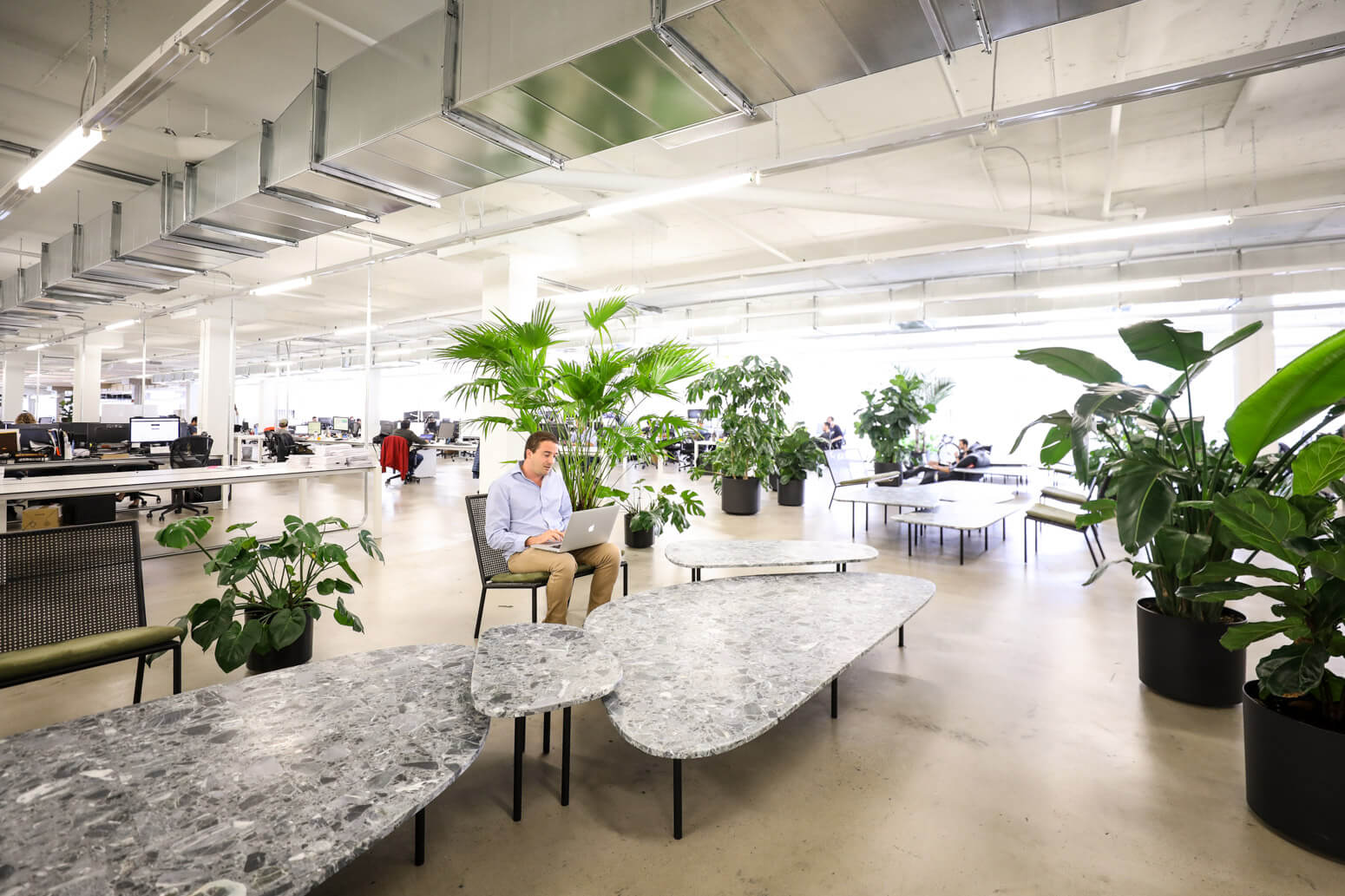SSENSE Office Killer Spaces Montreal-19